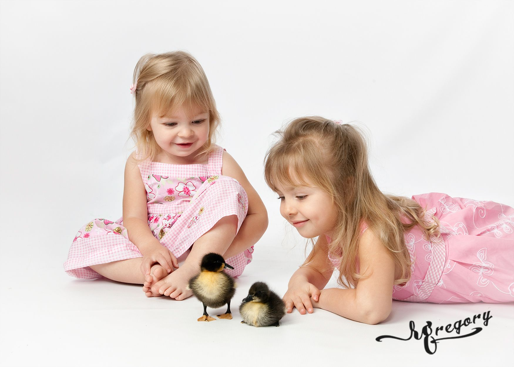 child studio pic in spring with baby ducks
