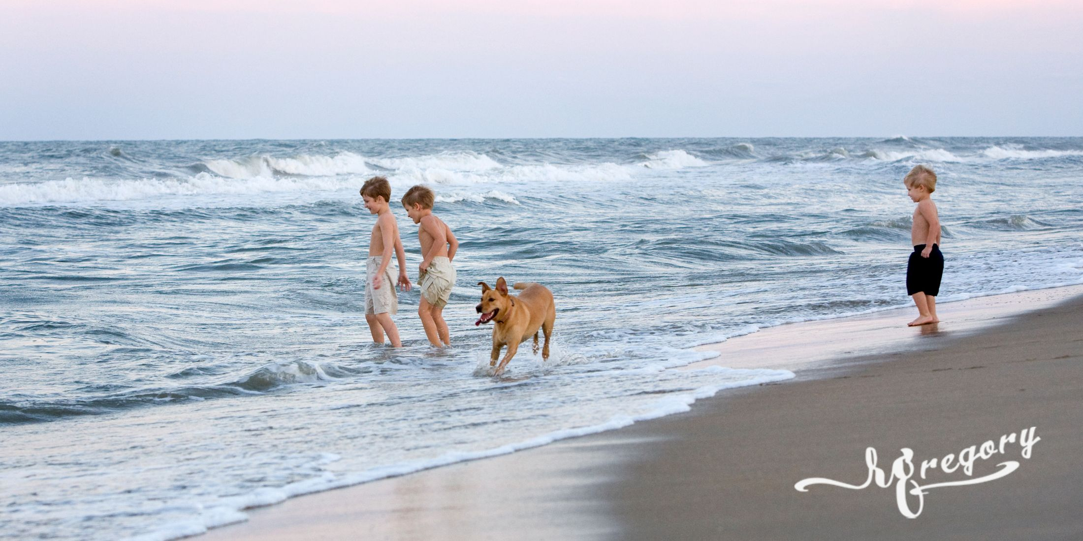 children and a dog on the beach pro pic